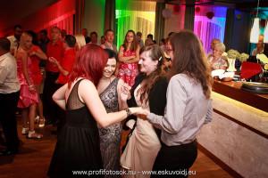 Esküvői DJ Székesfehérvár Diófa