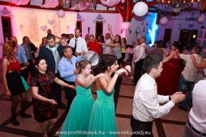 Esküvői DJ és Ceremóniamester Lázár Lovaspark Domonyvölgy 1