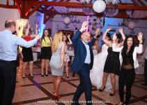 Esküvői DJ és Ceremóniamester Lázár Lovaspark Domonyvölgy